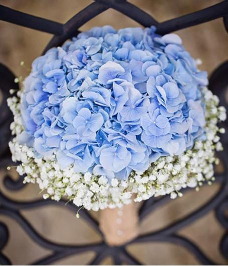 Hoa cưới hoa cẩm tú cầu